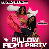 PILLOW FIGHT PARTY (2013)