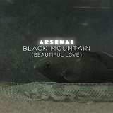BLACK MOUNTAIN (BEAUTIFUL LOVE 2014)